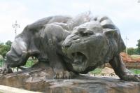 Tiger Statue, Maharaja's Palace