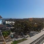 Fallen Star, UC San Diego